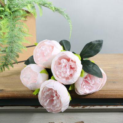 Arundel Peony Bush Light Pink (12/144)