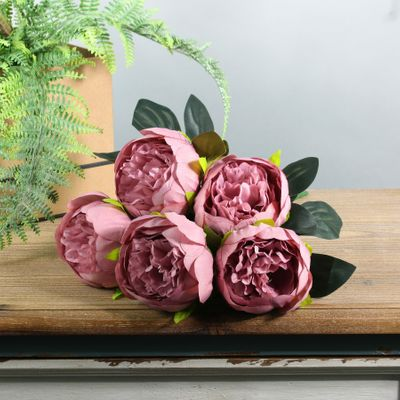 Arundel Peony Bush Dusky Pink (12/144)