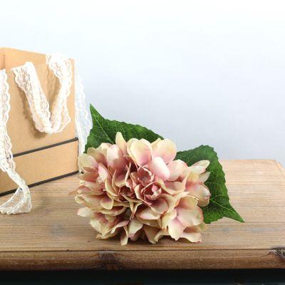 Arundel Hydrangea Cream Pink (24/144)