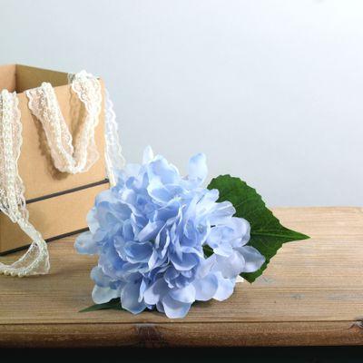 Arundel Hydrangea Blue (24/144)