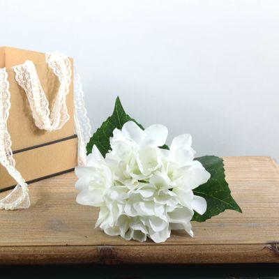 Arundel Hydrangea Ivory (24/144)