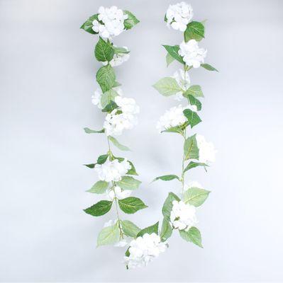 Hydrangea Garland Cream (180cm)(6/36)