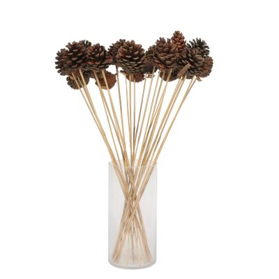 Natural pine cone pick on 50cm stem (x25 stems)