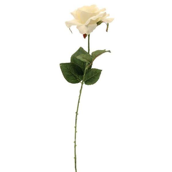 Rose Cream 42cm