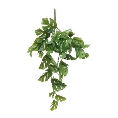 "24"" Split Philo Hanging Bush (12/72)"