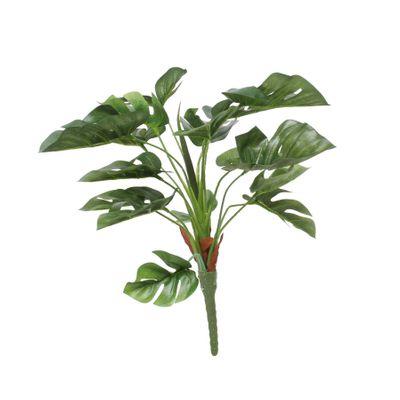 Split Philo Plant (38cm)