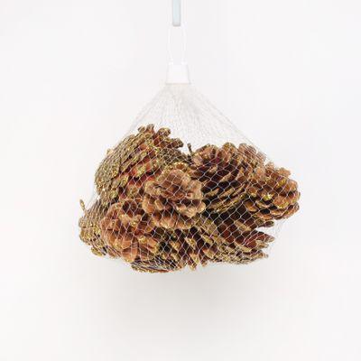 Gold Glitter Pinecones (250g / Net)