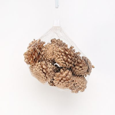 Gold Pinecones (250g / Net)