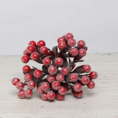 Berry bunch red frosted with leaves