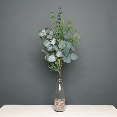 Eucalytus and pine pick