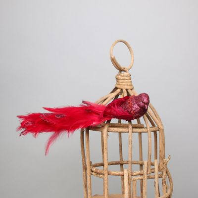 Red Lyre Bird Glitter w/clip