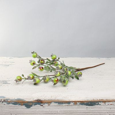 Berry pick green 30cm
