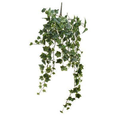 English Ivy Hanger (86cm)(6/36)