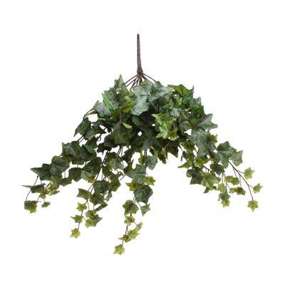 Frosted Ivy Bush Vine (60cm)(6/24)