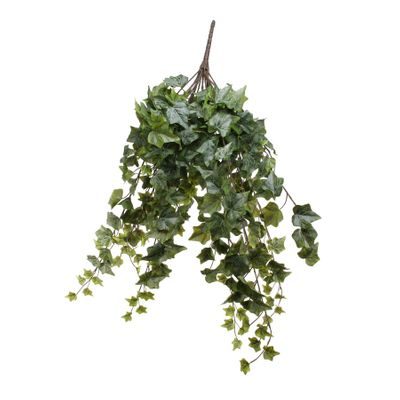 Frosted Ivy Bush Vine (80cm)(4/16)