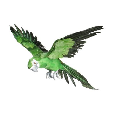 Green Flying Macaw (S)