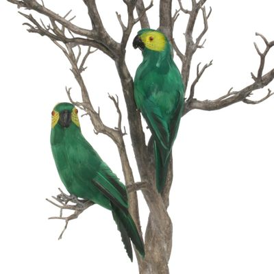 Green Baby Macaw