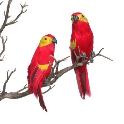Red Mini Macaw