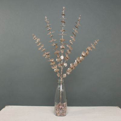 Glitter Eucalyptus x 5 stem Champagne