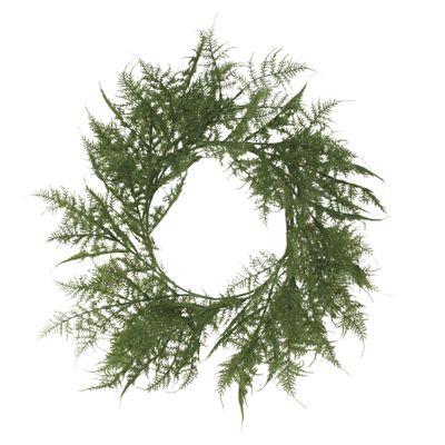 Asparagus Fern wreath 60cm