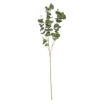 Balmoral Eucalyptus Green