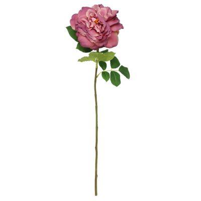 Balmoral Wild Rose Purple