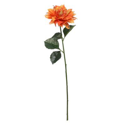Glamis Single Dahlia with 2 Leaves Orange (61cm)