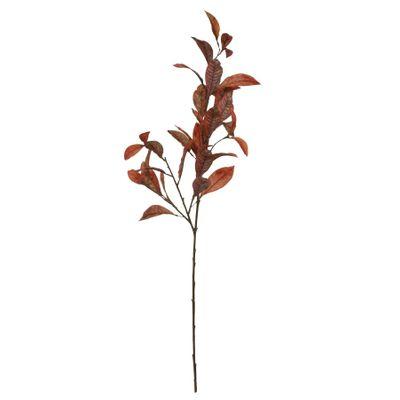 Glamis Croton Spray Orange (108cm)