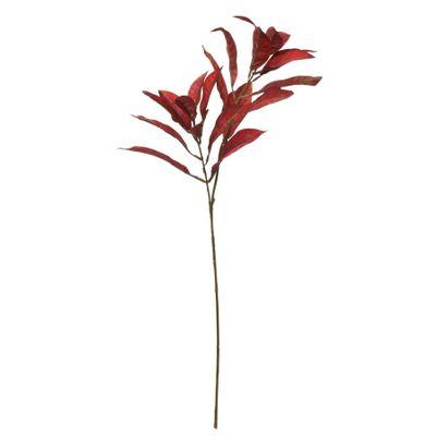 Glamis Croton Spray Red (72cm)