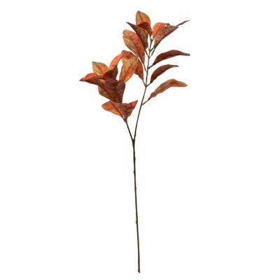 Glamis Croton Spray Orange (72cm)