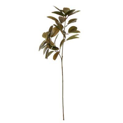 Glamis Citrus Leaves Spray Green (75cm)