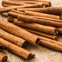 Cinnamon Sticks cat