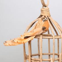 tree bird cat