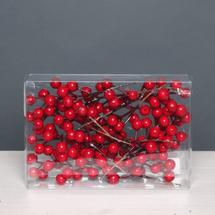 wreath berries cat