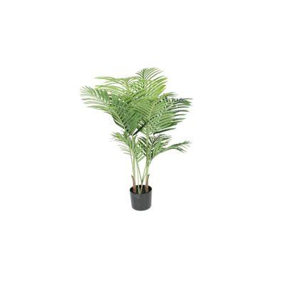 Parlour Palm 110cm