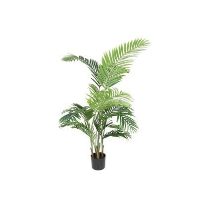 Parlour Palm 140cm