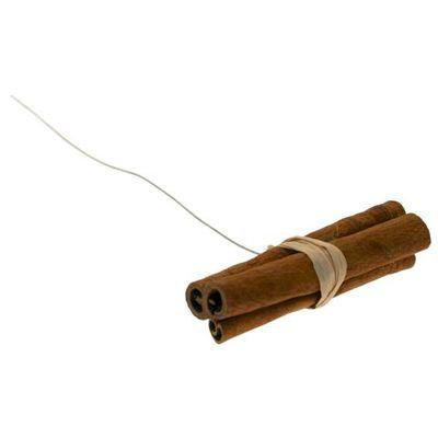 Cinnamon Sticks on Wire