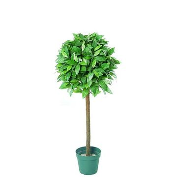 3ft Single Bay Topiary Tree