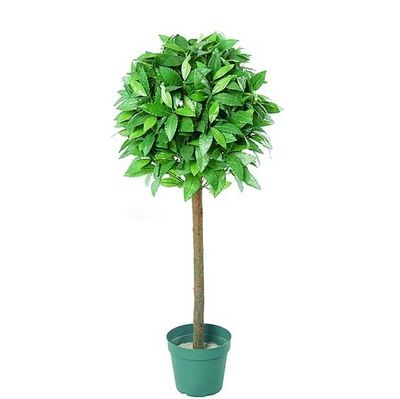 4ft Single Bay Topiary Tree