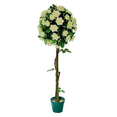 Rose Topiary Tree