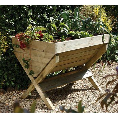 Forest Garden Kitchen Garden Trough