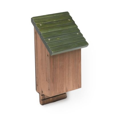Tom Chambers Bat Box