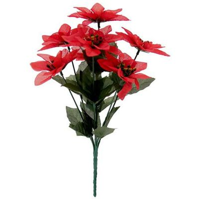 Red Poinsettia Bush - Small