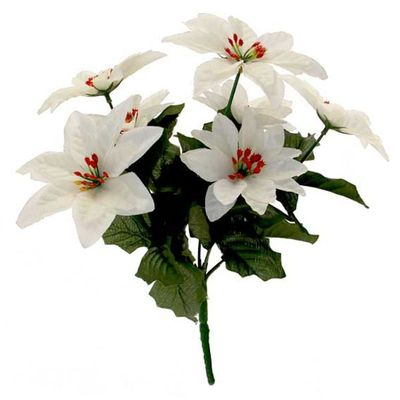 White Poinsettia Spray