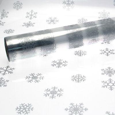 Silver Snowflake Film