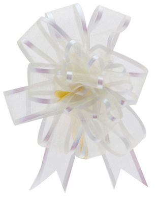 Ivory Organza Pull Bow (25mm)