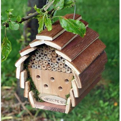 Kingfisher Insect and Bee Hotel
