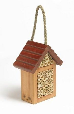 Tom Chambers Happy Bee Box WL03