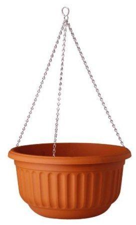 Stewart Corinthian Hanging Basket