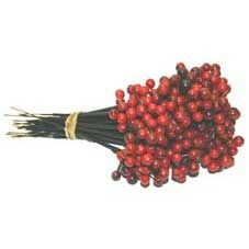 Red Plastic Berry Pick